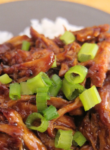 Braised Country Style Pork Ribs Recipe In Ginger Ale & Hoisin Sauce ...