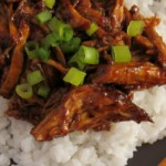 Braised Country Style Pork Ribs Recipe in Ginger Ale & Hoisin Sauce