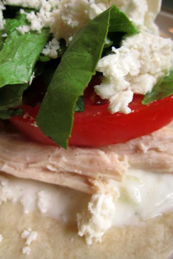 Chicken and Tzatziki Wraps